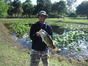 DB From Florida Hillbilly