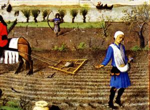 Farming  Jobs During A Collapse